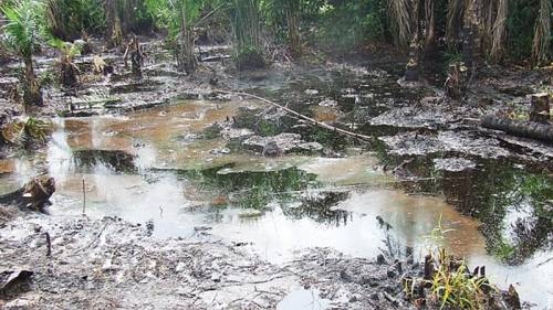 Minister Of  State For  Environment : $177 Million  Has  Been  Raised  For  The  Clean-up  Of  Ogoni Land .