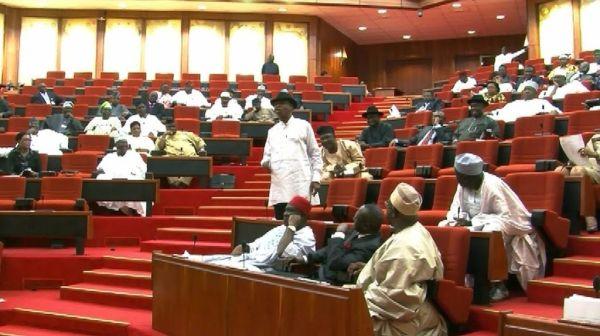 Shocking:Evil Bird Found On Akwa Ibom House Of Assembly Speaker's Seat(Photo)